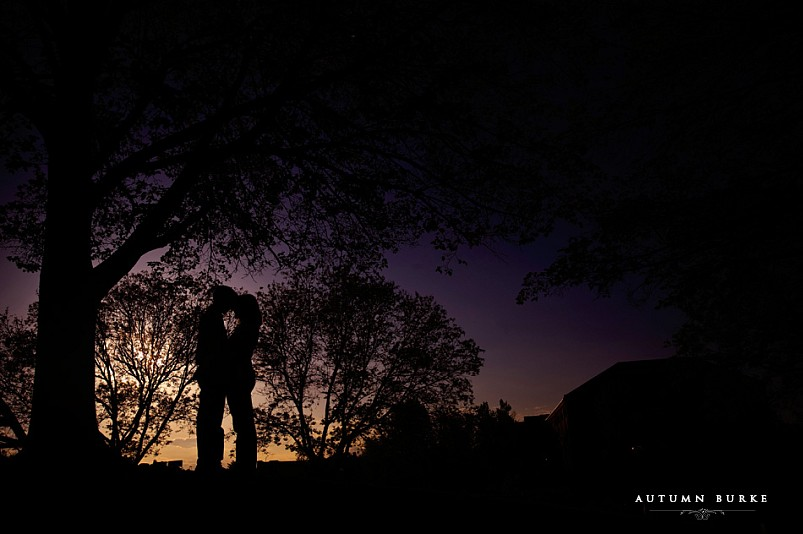 downtown denver colorado engagement session sunset tree silhouette